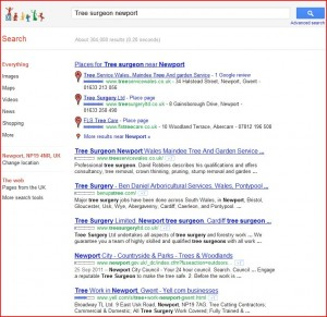 Search based web marketing page one seo Cardiff Wales 300x291 SEO Cardiff Search Based Web Marketing Cardiff